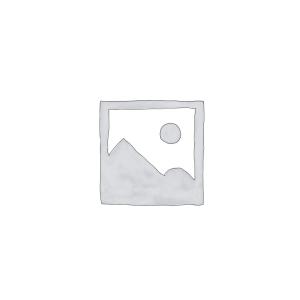 Accessoire de Voiture/Camera
